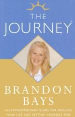 תקציר ספר המסע  לפי שיטת המסע - ברננדון בייס - Brandon Bays-the journey